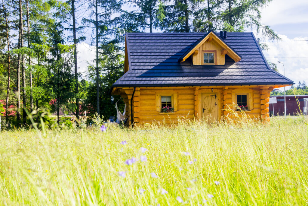 Dom góralski z łąką